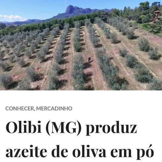 Olibi (MG) produz azeite de oliva em pó